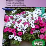 Petunia F1 Tidle Wave SIlver & Cherry red