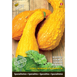 Specialties Squash Early Summer Crookneck