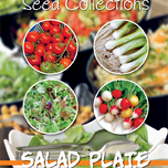 Seeds Collection Salad Plate (4in1)