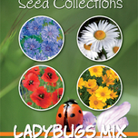 Seeds Collection Ladybugs Mix (4in1)