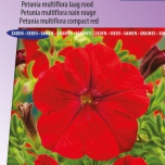 Petunia Multiflora Fire Chief Rood