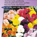 Viool Holland Giants Mix – Viola Clear Crystals