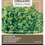 Organic Sprouting Mosterd kers - Buzzy