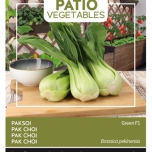 Pak Soi Green F1 - Buzzy Patio Vegetables